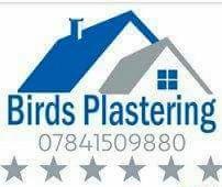 Birds Plastering