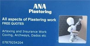 ANA Plastering