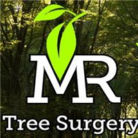 M R Tree Surgery