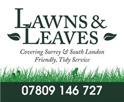 Lawns and Leaves