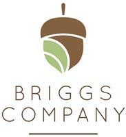 Briggs Company