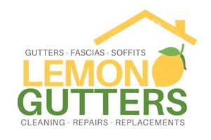 LEMON GUTTERS - Cleaning, Repairs, and Replacements