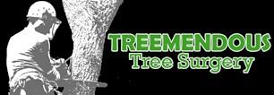 Treemendous Tree Surgery