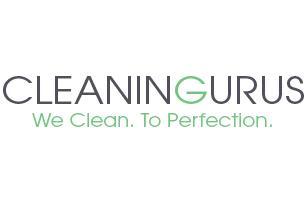 Cleaning Gurus