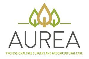 Aurea Tree Surgery & Consultancy
