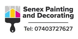 Senex FM Painting