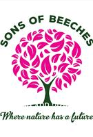 Sons of Beeches Trees and Landscapes