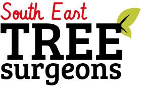 Graham Kenward - South East Tree Surgeons Ltd