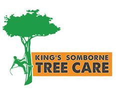 King's Somborne Tree Care