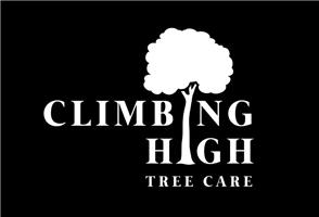 Climbing High Tree Care