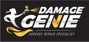 Damage Genie Limited