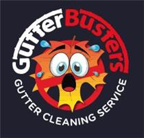 The Gutter Busters Bristol