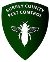 Surrey County Pest Control
