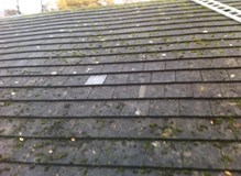 Completed water tight roof