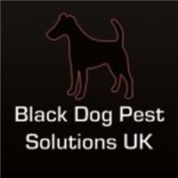 Black Dog Pest Solutions UK