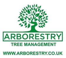 Arborestry Tree Management