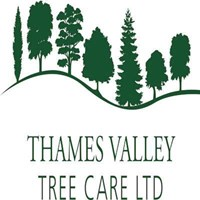 Thames Valley Tree Care