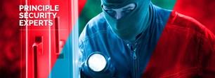 Principle Security Limited