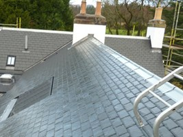 Morton Roofing and Painting Services