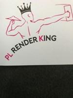P L Renderking Ltd