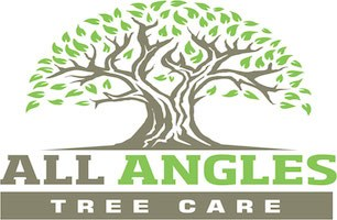 All Angles Tree Care