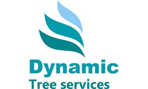 Dynamic Tree Services (DTS)