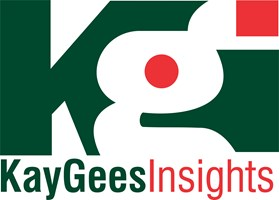 Kaygees Insights Cleaners