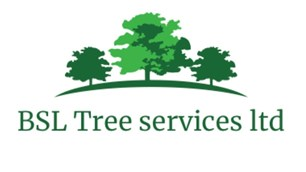 BSL Tree Services