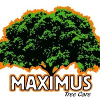 Maximus Tree Care