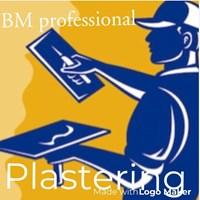 BM Professional Plastering