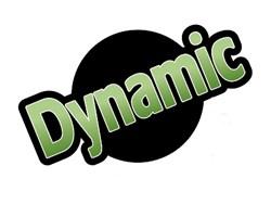 Dynamic Plumb Limited