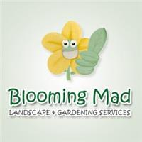 Blooming Mad Landscapes