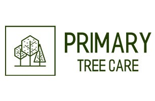 Primary Tree Care