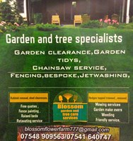 Blossom Garden and Tree Services