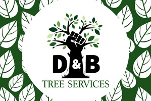 D&B Tree Services