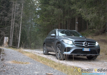 Mercedes GLC 250d 4MATIC Tre Quarti Bosco Basso