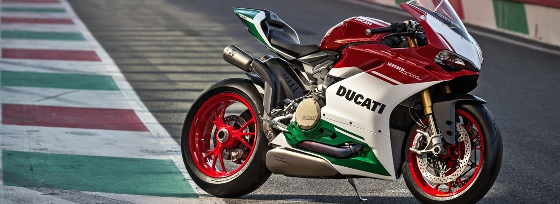 1299 Panigale R Final Edition Pista