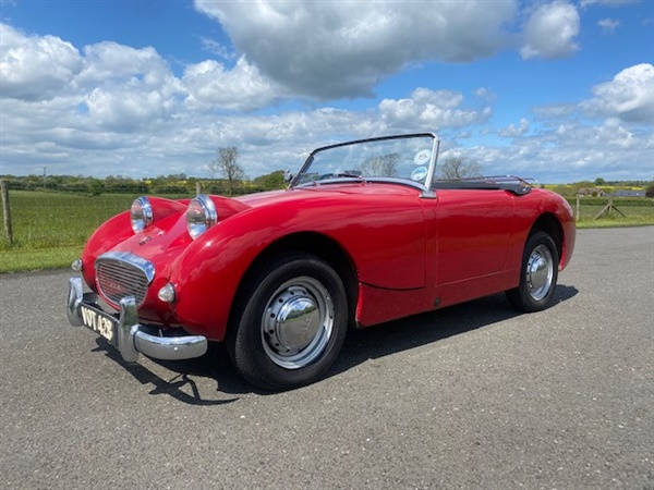 Large image for the Austin Healey FROGEYE SPRITE