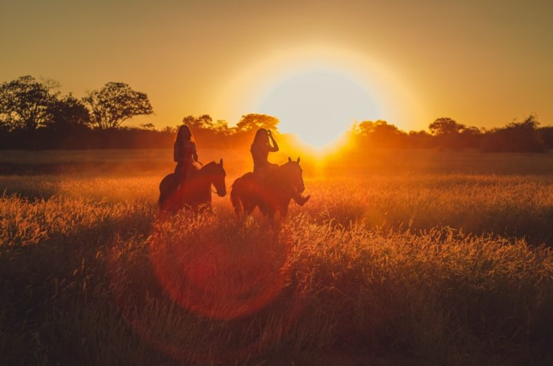 Riding horses in the sunset - Photo by willsantt