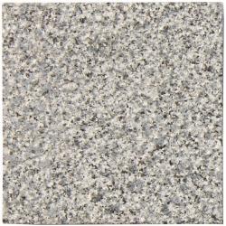 Nibo Granite grey polished