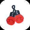 бокс и кикбоксинг