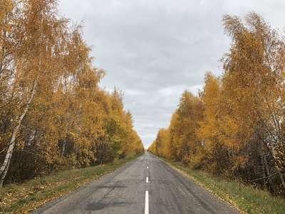 Осенние дороги тульской области @dmitry_serdyk