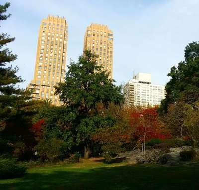 Нью-Йорк в октябре. Центральный парк