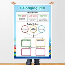 Belonging Plus in Gorey Community School