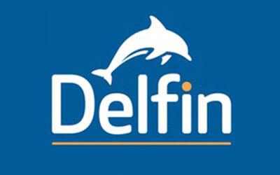 Delfin English School Dublin