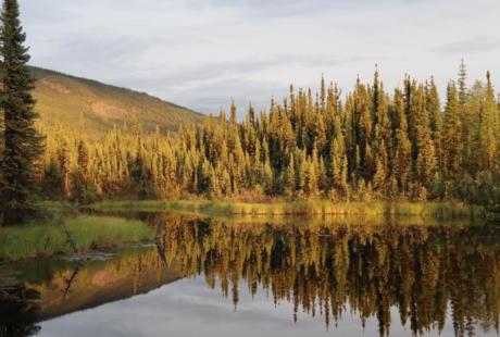 9 Bes Yukon 2019 James 1401