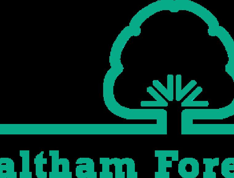 Lb Waltham Forest Logo