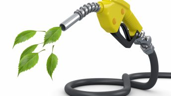 EU must not turn its back on biofuels says Copa-Cocega