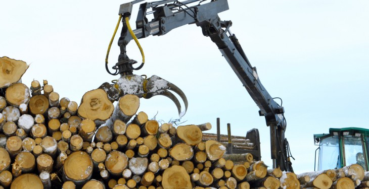 BSW Group announces takeover of Dick Brothers Forestry