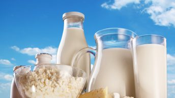 Environmental footprint of dairy products under the microscope